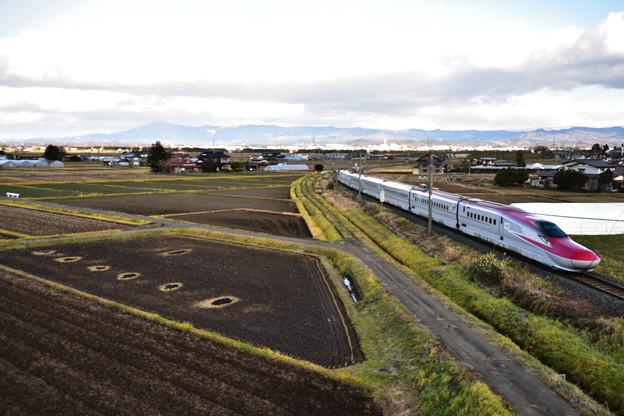 初冬の田んぼと秋田新幹線