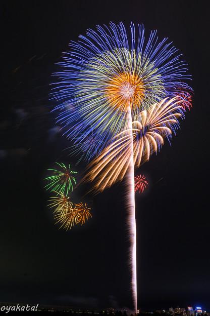280813-とりで利根川大花火14
