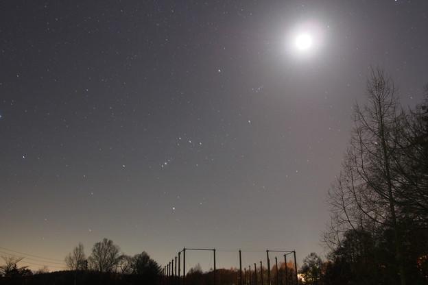 西の空のオリオン   冬の大三角   プレアデス星団