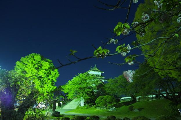 八重桜を眺めながら思う、地球には美しいお花と渋い建築物がある、人類の誇り