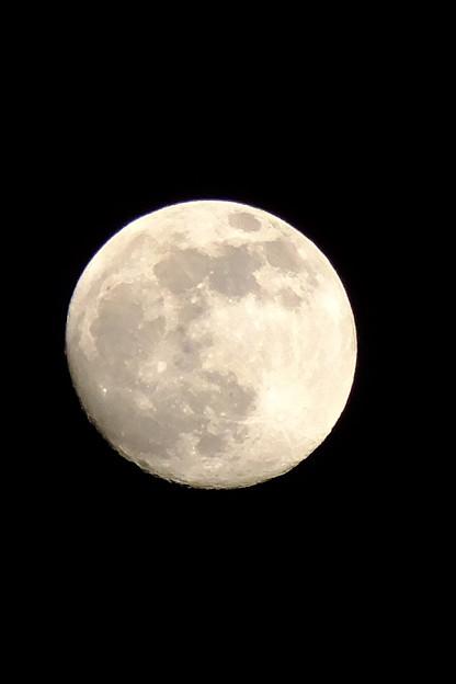 写真: 月齢13