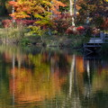Photos: 水面は風景を写す鏡