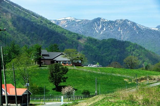 Photos: 写真00953 芳沢牧野から秋田駒ケ岳