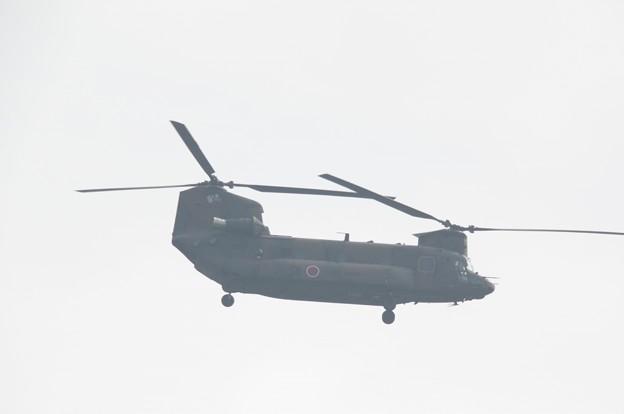 IMGP9471ヘリ