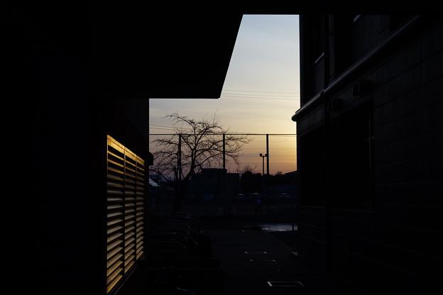 Photos: DSC04066
