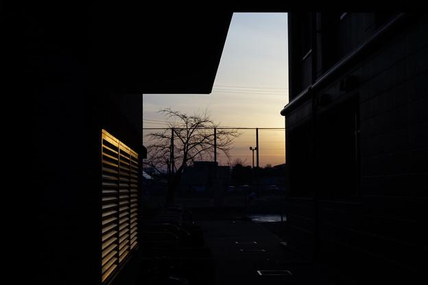 Photos: DSC04067