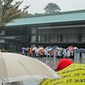 雨の皇居参観