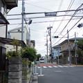 写真: 千代の富士