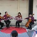 写真: ポッチャリーノ弦楽四重奏団の演奏