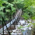 Photos: 聖沢の吊橋