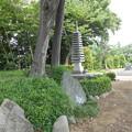 写真: 岩槻区 正蔵院