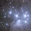 写真: M45プレアデス(IMG_9242)