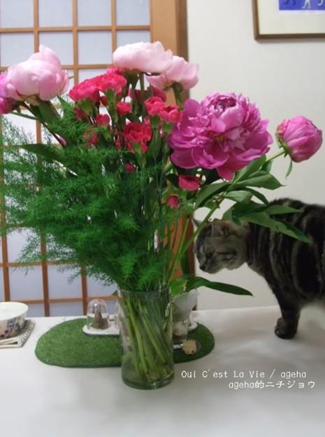 母の日に芍薬花束。