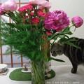 Photos: 母の日に芍薬花束。