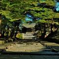 写真: 毘沙門堂