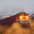 写真: 石巻線貨物 前谷地ー涌谷