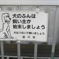 Photos: 犬糞~品川区