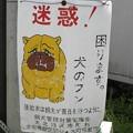 Photos: 犬糞 ~白馬村