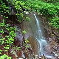 Photos: まぼろしの滝