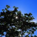 水無月の空