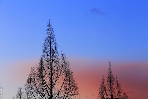 写真: 雪雲染まり