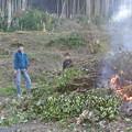写真: 伐採した枝の焼却