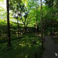 妙心寺・桂春院32