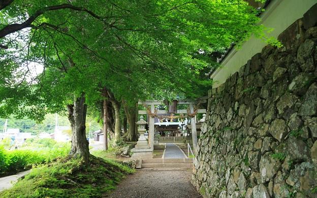 篠葉神社09