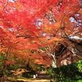Photos: 神蔵寺23