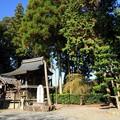 Photos: 篠村八幡宮02