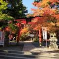 写真: 鍬山神社77