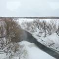 Photos: 雪融けの小川