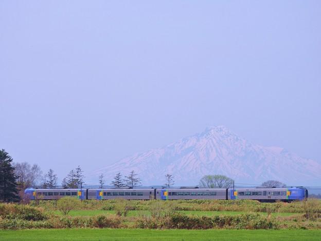 Photos: 特急「スーパー宗谷」