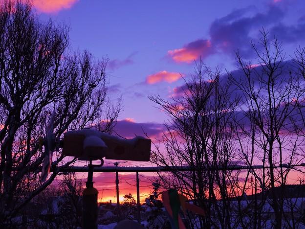 夜明けの情景_1