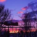 写真: 夜明けの情景_1