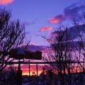 Photos: 夜明けの情景_1