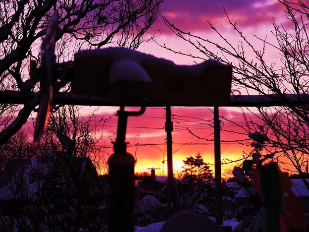 Photos: 夜明けの情景_2