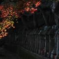 五百羅漢の秋