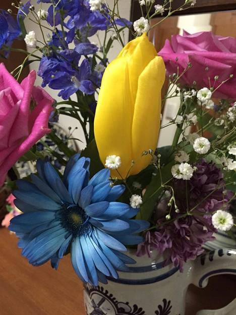 Photos: いただいたお花2015・38