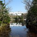 写真: 二湖&水芭蕉