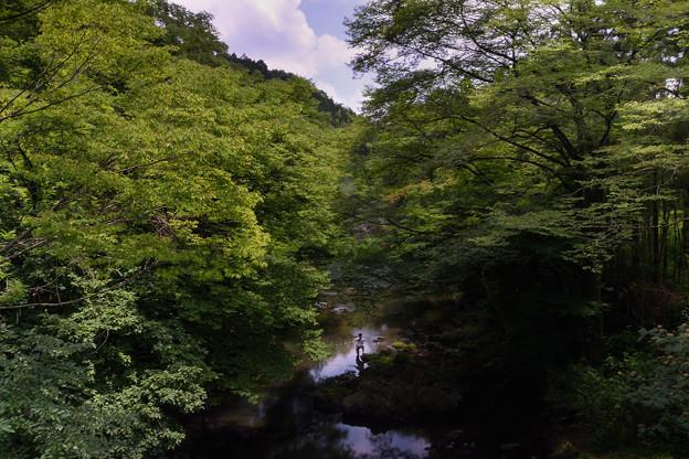Photos: 渓流釣り