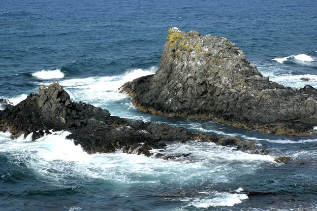 スコトン岬 (2)