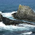 Photos: スコトン岬 (2)