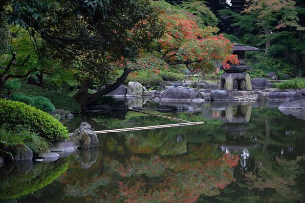 古河庭園 (2)