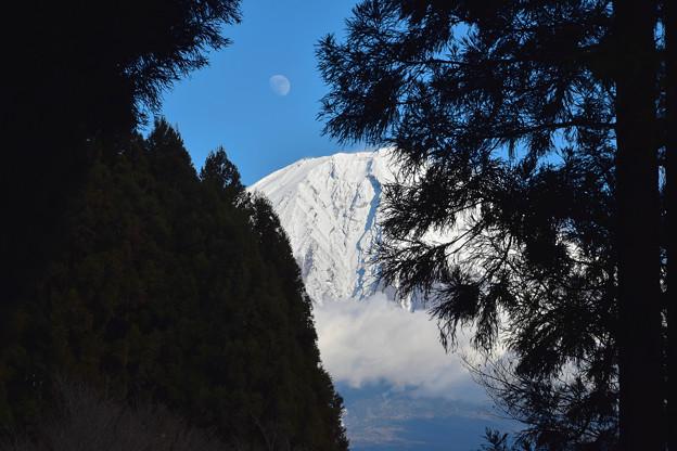 写真: 月と富士 (2)