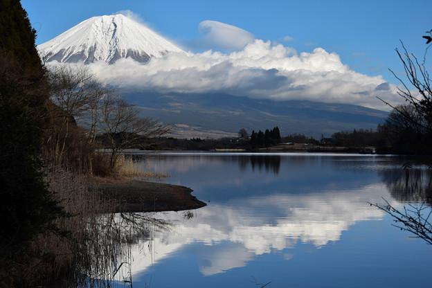 写真: 富士山 (9)
