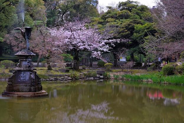 鶴の噴水(6)