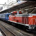 "Photos: 快速""DL青い12系客車号"""