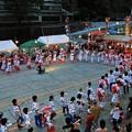 はんざき祭り総踊り2