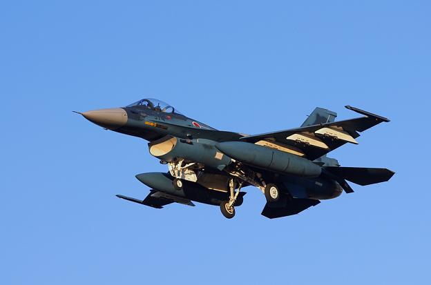 F-2A(1)